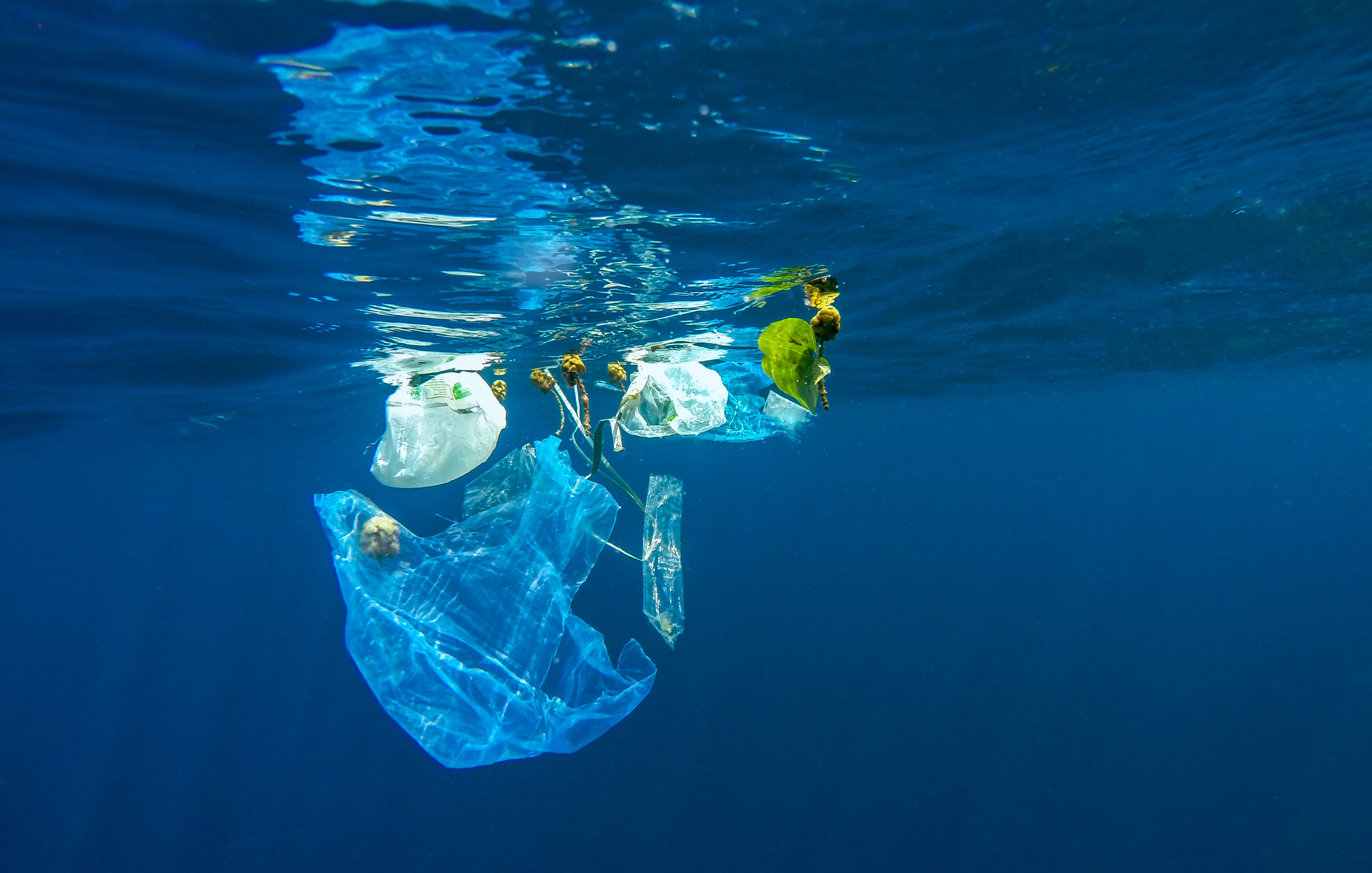 Circular Cleanup - new project for a cleaner ocean